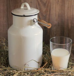 Raw Milk's Expiration Date. Easy ways to use raw milk even after it turns sour. traditionalhomemaker.com