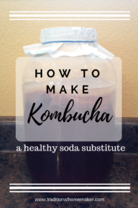 How to Make Kombucha: a healthy, refreshing substitute for soda