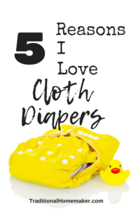Cloth diapers is a term that dredges up pooey visions for my mother. We have entered a new era, now, in cloth diapering! Here's why I love cloth diapers!